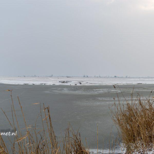 Oostvaardersplassen & Oostvaardersveld in de sneeuw